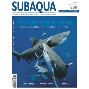 Subaqua #289   Portraits - Les grands animaux marins