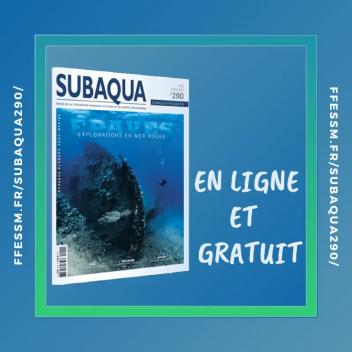 Subaqua 290 - Version en ligne